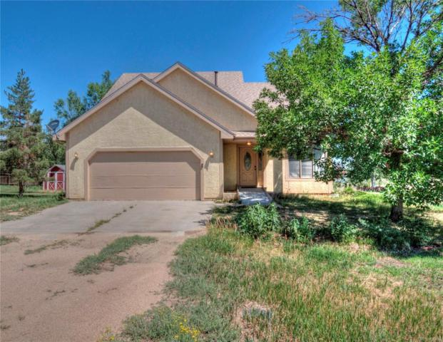 1007 Elk Street, Simla, CO 80835 (#6337511) :: Wisdom Real Estate