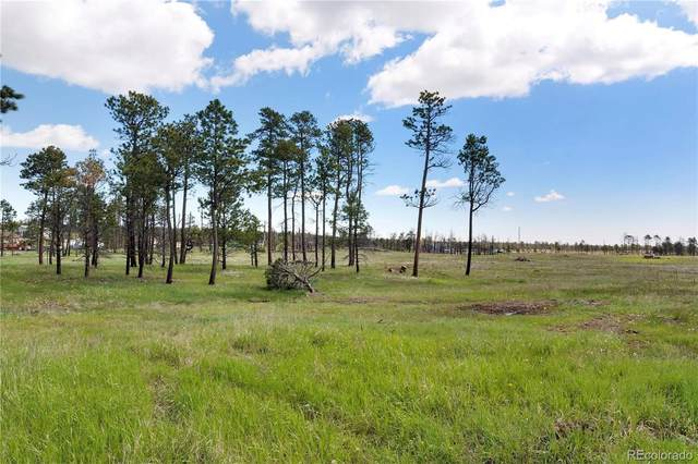 8662 Sanctuary Pine, Colorado Springs, CO 80908 (#6340098) :: The DeGrood Team
