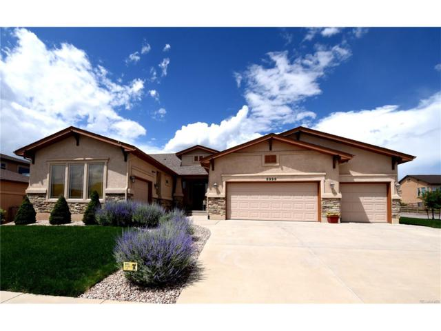 5998 Leon Young Drive, Colorado Springs, CO 80924 (#6341978) :: The Dixon Group