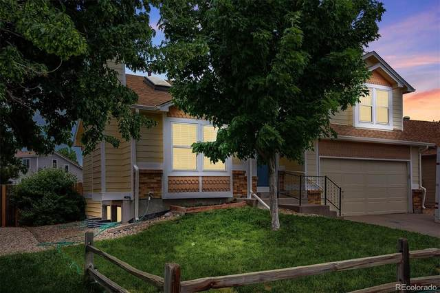 4250 Genoa Street, Denver, CO 80249 (#6343863) :: Portenga Properties