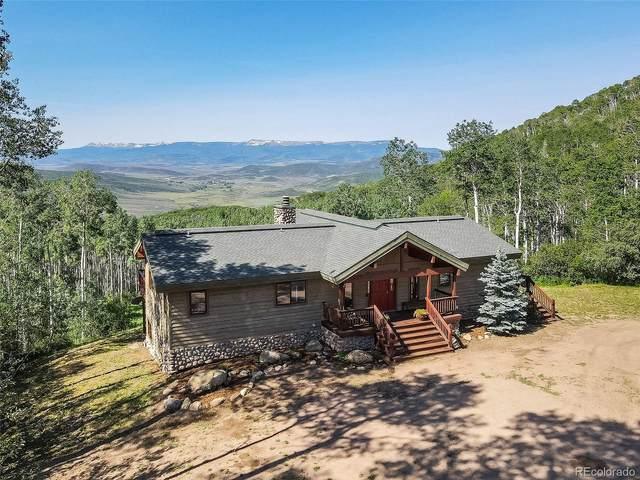 24625 Jack Creek Road, Oak Creek, CO 80467 (#6349642) :: Sultan Newman Group
