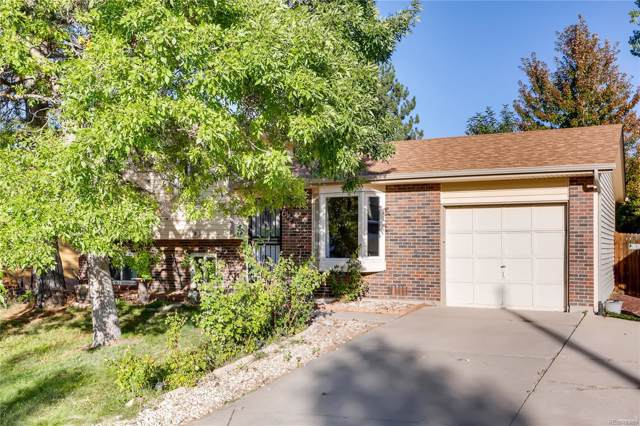 4856 S Xenophon Way, Morrison, CO 80465 (#6350112) :: 5281 Exclusive Homes Realty