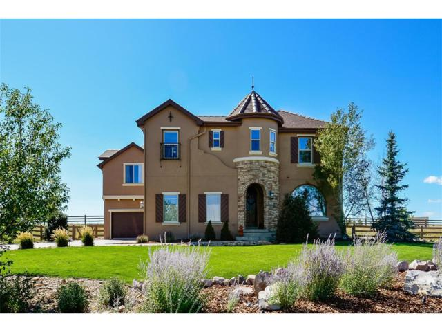 2505 Eastview Drive, Castle Rock, CO 80104 (#6354080) :: The Peak Properties Group