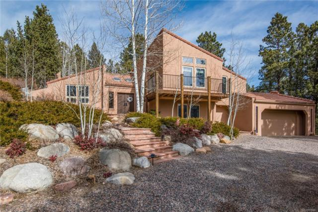 30194 Wild West Trail, Evergreen, CO 80439 (#6354755) :: The Peak Properties Group