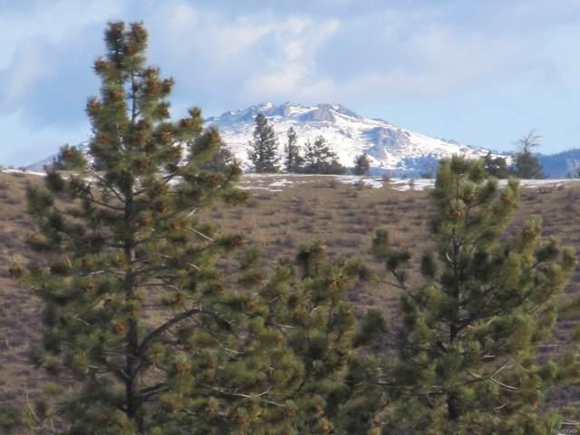 135 Mesa Road, Hartsel, CO 80449 (#6356582) :: Bring Home Denver with Keller Williams Downtown Realty LLC