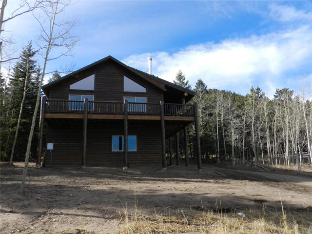 1108 S Pine Drive, Bailey, CO 80421 (#6359908) :: RE/MAX Professionals