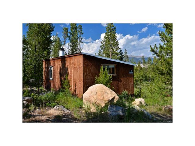 462 Gemstone, Grand Lake, CO 80447 (#6361768) :: The DeGrood Team