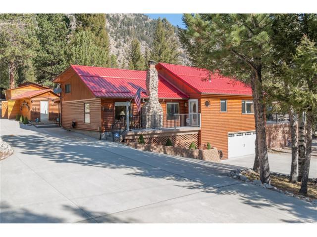 22350 County Road 292, Nathrop, CO 81236 (#6363089) :: Wisdom Real Estate