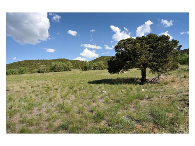 0000 Rocky Mountain Road, Poncha Springs, CO 81242 (MLS #6367356) :: 8z Real Estate