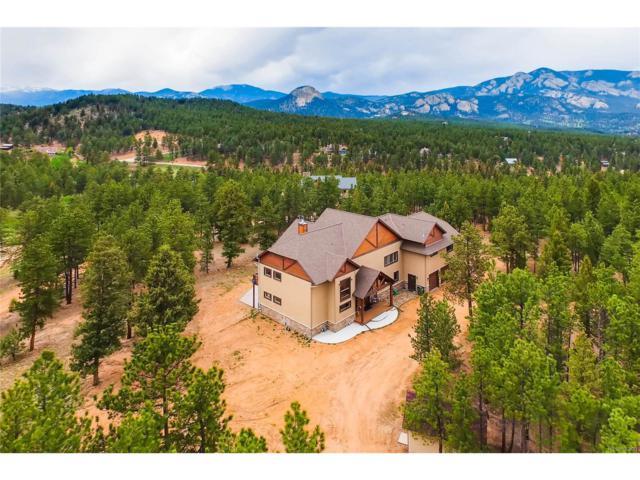 177 Territory Drive, Pine, CO 80470 (MLS #6368482) :: 8z Real Estate