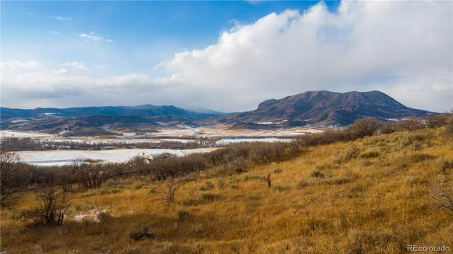 41950 Marabou Loop, Steamboat Springs, CO 80487 (#6370143) :: Arnie Stein Team   RE/MAX Masters Millennium