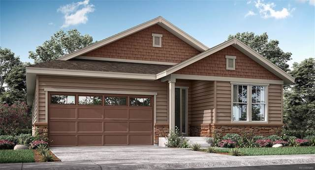 506 176th Avenue, Broomfield, CO 80023 (#6371583) :: Real Estate Professionals