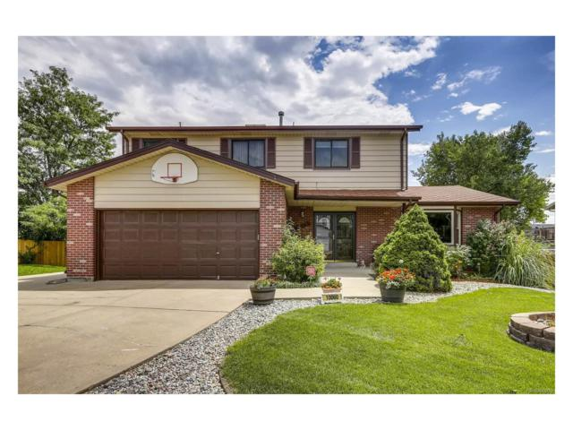 10060 Columbine Court, Thornton, CO 80229 (MLS #6372991) :: 8z Real Estate