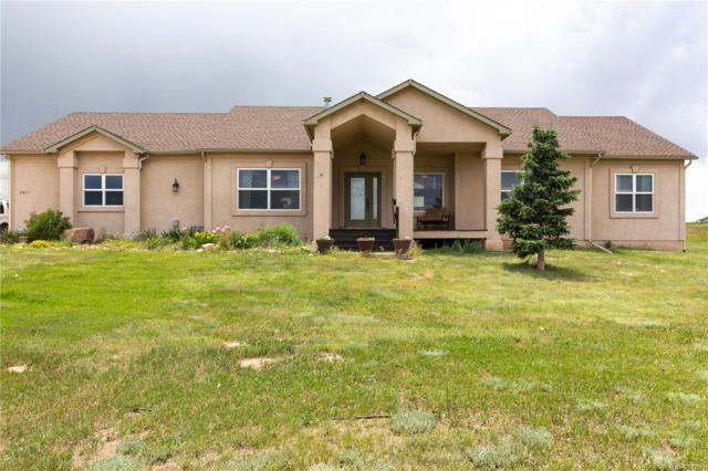6015 Filly Lane, Colorado Springs, CO 80908 (MLS #6373790) :: 8z Real Estate