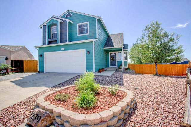 1239 White Stone Way, Fountain, CO 80817 (#6376802) :: The Heyl Group at Keller Williams