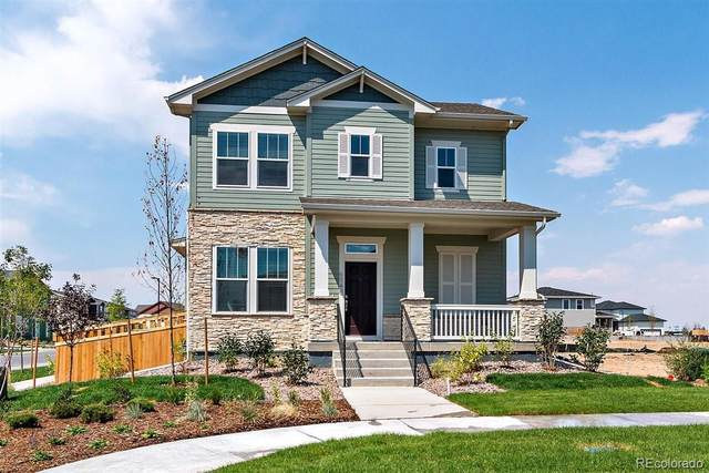 6196 Netherland Court, Aurora, CO 80019 (#6377733) :: You 1st Realty