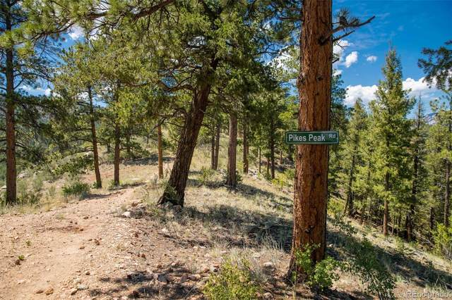 14433 Lot 5 Elk Creek Road, Pine, CO 80470 (#6377970) :: Kimberly Austin Properties