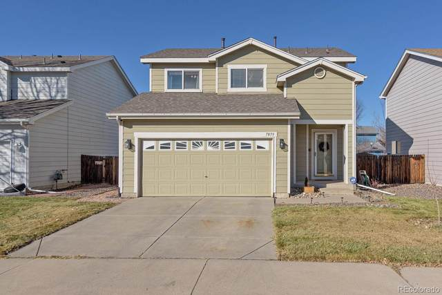 7859 Humboldt Circle, Denver, CO 80229 (#6378178) :: Symbio Denver