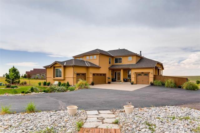2380 Antelope Ridge Trail, Parker, CO 80138 (#6378569) :: Colorado Home Finder Realty