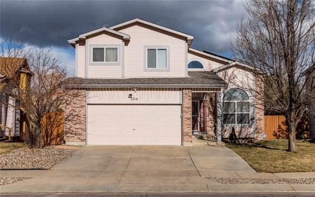 1514 Chutney Court, Colorado Springs, CO 80907 (MLS #6380825) :: 8z Real Estate