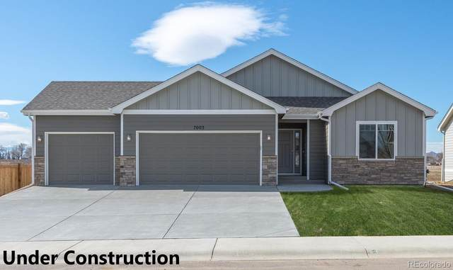 3425 Buffalo Grass Lane, Wellington, CO 80549 (#6385245) :: Venterra Real Estate LLC