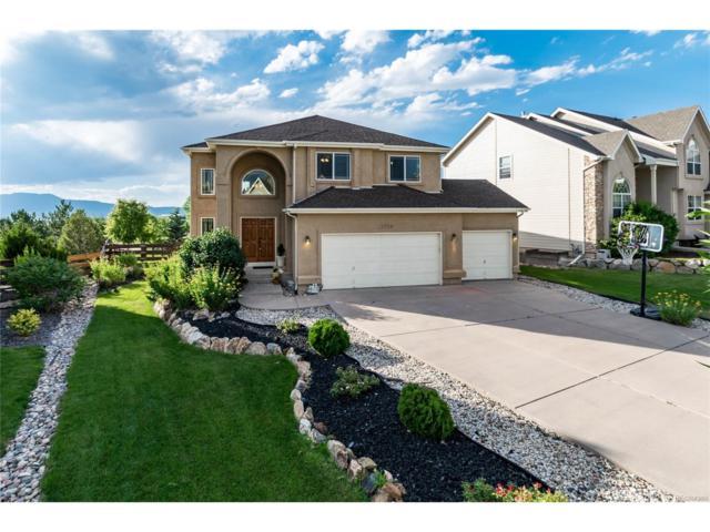 12724 Rockbridge Circle, Colorado Springs, CO 80921 (MLS #6386475) :: 8z Real Estate