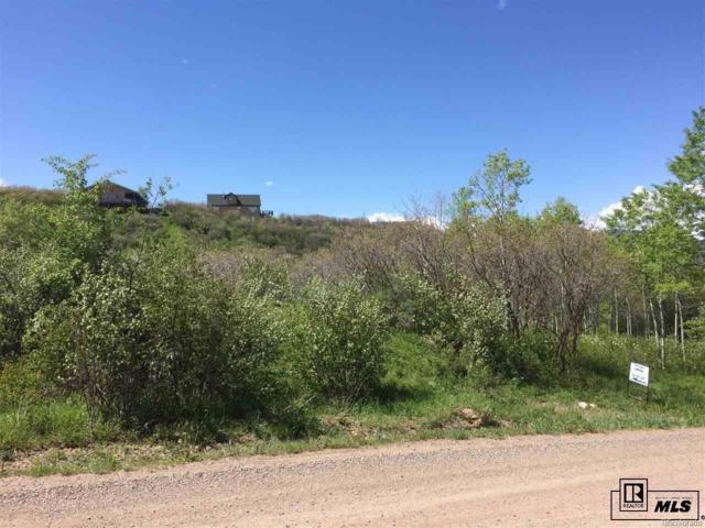 31090 Fallen Falcon Trail, Oak Creek, CO 80467 (#6386590) :: The Heyl Group at Keller Williams