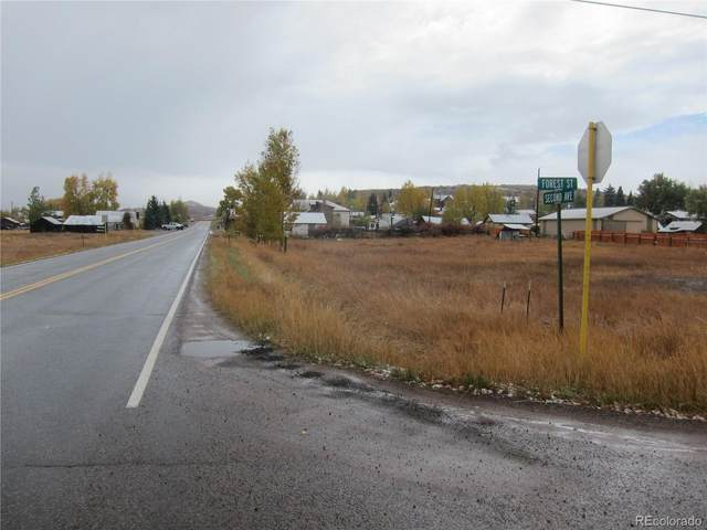 Tbd Highway 131, Phippsburg, CO 80469 (#6391998) :: Berkshire Hathaway HomeServices Innovative Real Estate