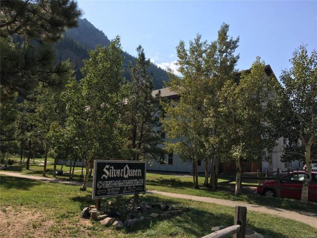 1901 Clear Creek Drive D-201, Georgetown, CO 80444 (#6392436) :: The DeGrood Team