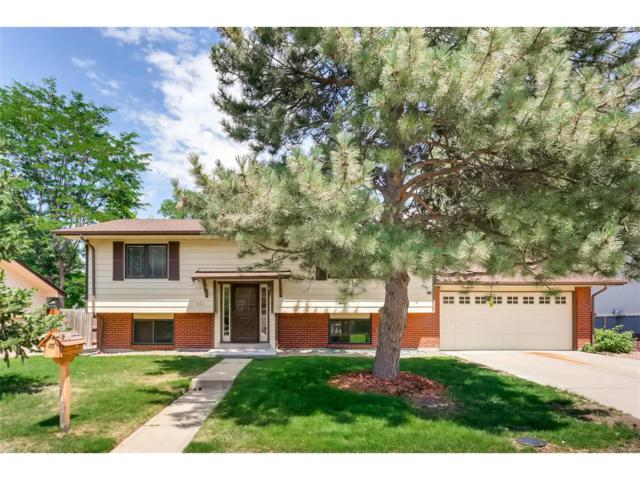 632 S Everett Street, Lakewood, CO 80226 (MLS #6393700) :: 8z Real Estate