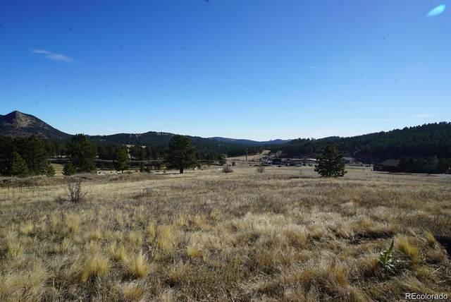 356 Bull Dogger Road, Bailey, CO 80421 (#6394087) :: The DeGrood Team