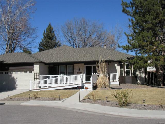 2743 E Irish Place, Centennial, CO 80122 (MLS #6399312) :: 8z Real Estate