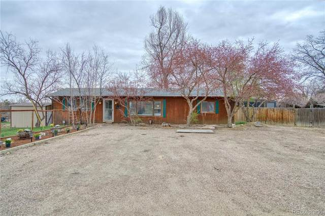 6520 Kyle Avenue, Fort Collins, CO 80525 (#6403382) :: Finch & Gable Real Estate Co.