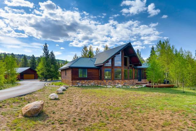 434 Glissade Trail, Alma, CO 80420 (#6403570) :: The Heyl Group at Keller Williams