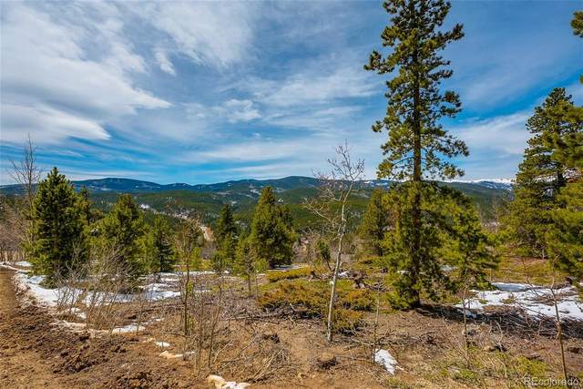 Lot 10 Dude's Drive, Rollinsville, CO 80474 (MLS #6413321) :: Stephanie Kolesar