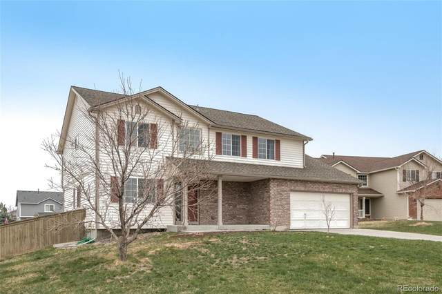 6163 Richfield Court, Castle Rock, CO 80104 (#6414077) :: The HomeSmiths Team - Keller Williams