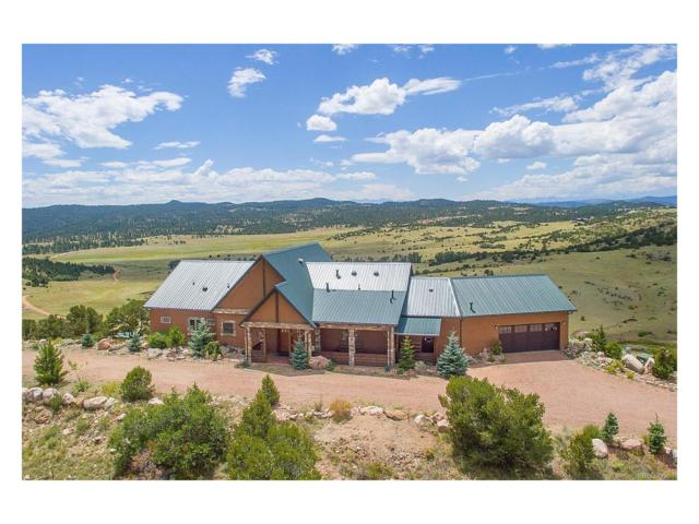 202 Henry Trail, Canon City, CO 81212 (MLS #6416137) :: 8z Real Estate