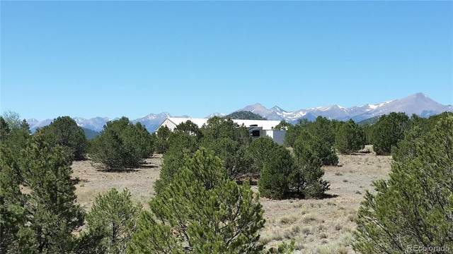 1663 21st Trail, Cotopaxi, CO 81223 (#6416508) :: Berkshire Hathaway Elevated Living Real Estate