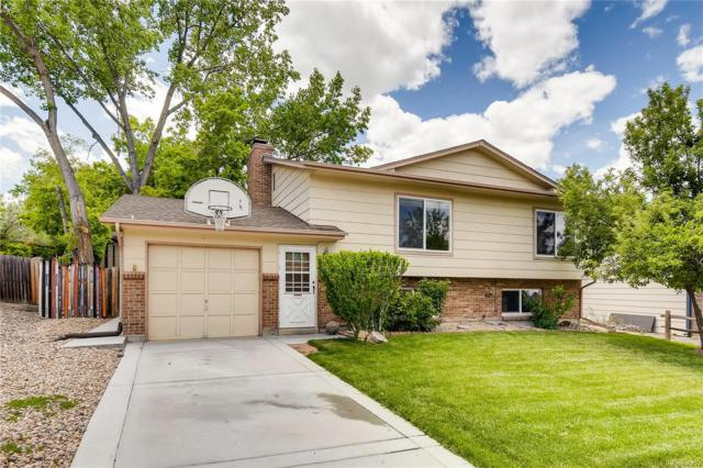 12042 W Dumbarton Drive, Morrison, CO 80465 (#6418134) :: Berkshire Hathaway Elevated Living Real Estate