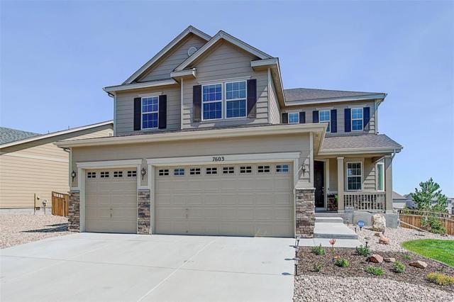 7603 Blue Water Lane, Castle Rock, CO 80108 (#6419449) :: Wisdom Real Estate