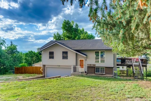 1145 Bulkey Street, Castle Rock, CO 80108 (#6422263) :: The Peak Properties Group