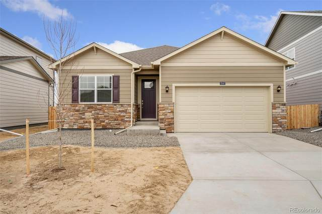 4992 Trails Edge Lane, Castle Rock, CO 80104 (MLS #6422795) :: Clare Day with Keller Williams Advantage Realty LLC