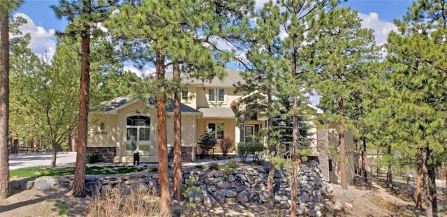 15912 Wildhaven Lane, Colorado Springs, CO 80921 (MLS #6426170) :: 8z Real Estate