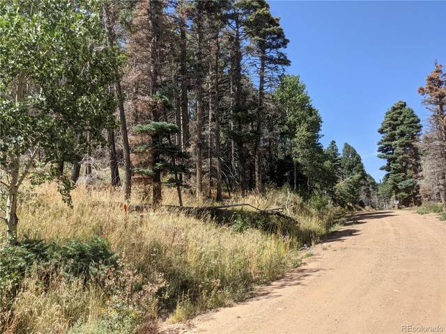 2012 Strauss Lane, Fort Garland, CO 81133 (#6426265) :: Own-Sweethome Team