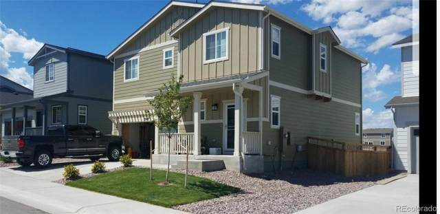 3549 Swabuck Place, Castle Rock, CO 80109 (#6427049) :: My Home Team