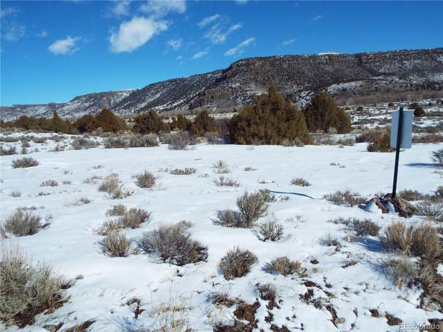 lot 10 Conejos Trail Drive, Antonito, CO 81120 (#6429830) :: The DeGrood Team