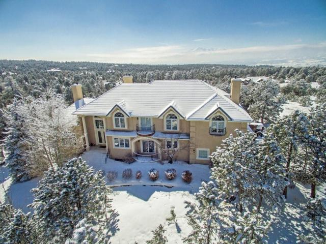1245 Scarsbrook Court, Monument, CO 80132 (#6432051) :: Harling Real Estate