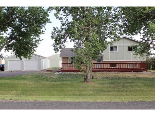 54774 E Bison Drive, Strasburg, CO 80136 (MLS #6433926) :: 8z Real Estate