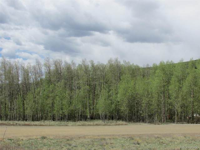1555 Sheep Ridge Road, Fairplay, CO 80440 (#6435254) :: Kimberly Austin Properties