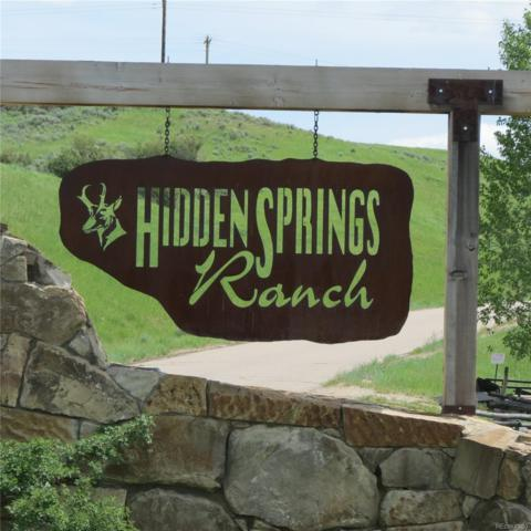 38620 Hidden Springs Drive, Hayden, CO 81639 (#6435868) :: Bring Home Denver with Keller Williams Downtown Realty LLC